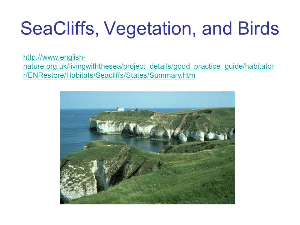 http://www.english- nature.org.uk/livingwiththesea/project_details/good_practice_guide/habitatcr r/ENRestore/Habitats/Seacliffs/States/Summary.htm