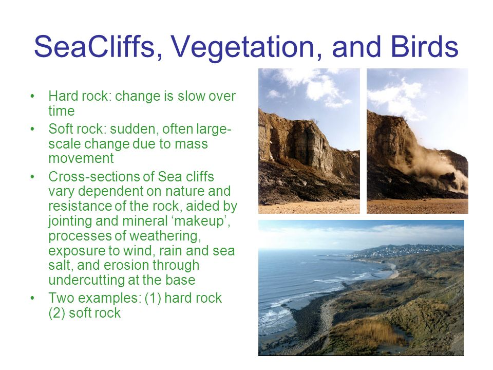 Hard rock: change is slow over time Soft rock: sudden, often large- scale change due to mass movement Cross-sections of Sea cliffs vary dependent on n