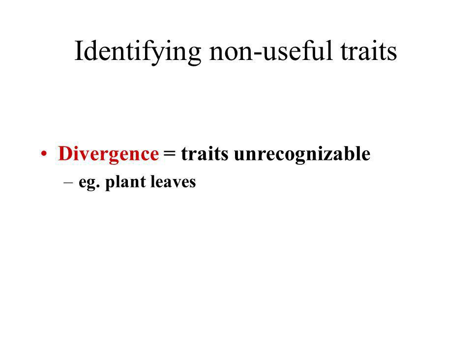 Divergence = traits unrecognizable –eg. plant leaves Identifying non-useful traits