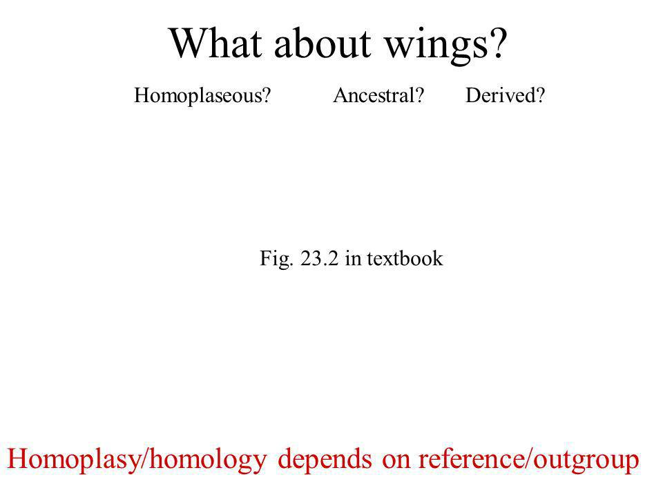 What about wings? Homoplaseous?Ancestral?Derived? Homoplasy/homology depends on reference/outgroup Fig. 23.2 in textbook