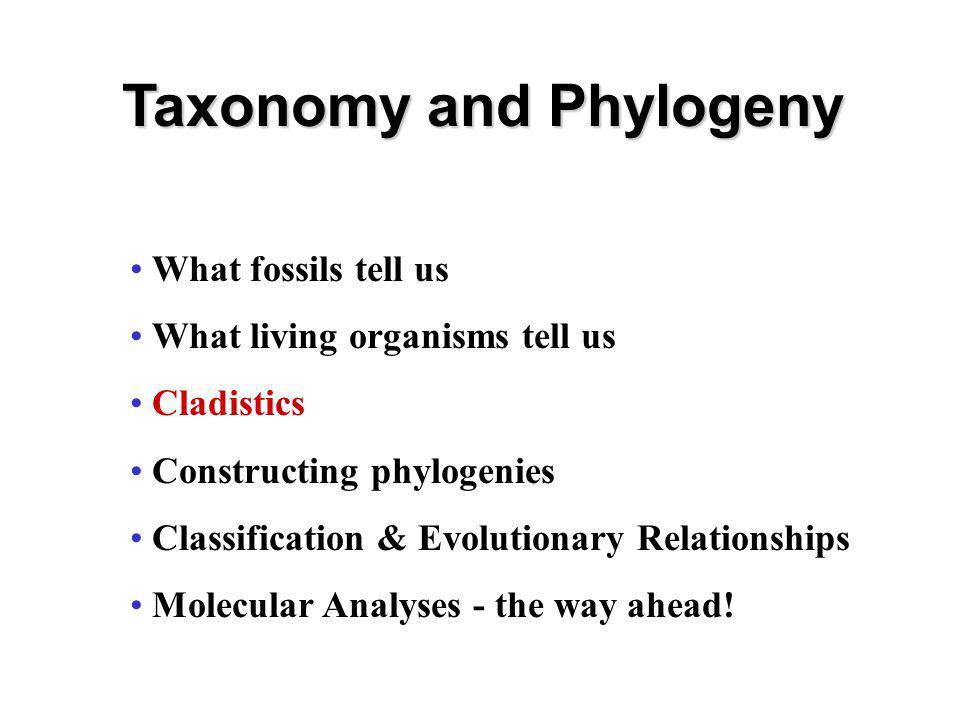 What fossils tell us What living organisms tell us Cladistics Constructing phylogenies Classification & Evolutionary Relationships Molecular Analyses