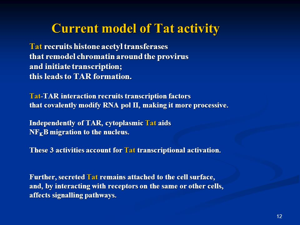 12 Current model of Tat activity Current model of Tat activity Tat recruits histone acetyl transferases that remodel chromatin around the provirus and initiate transcription; this leads to TAR formation.