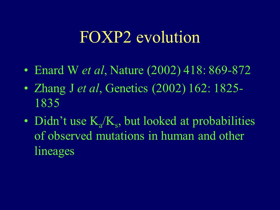FOXP2 evolution Enard W et al, Nature (2002) 418: 869-872 Zhang J et al, Genetics (2002) 162: 1825- 1835 Didnt use K a /K s, but looked at probabiliti