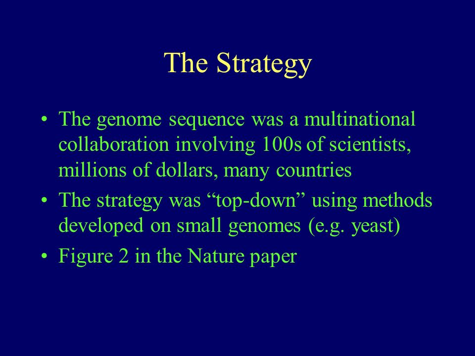 The Strategy The genome sequence was a multinational collaboration involving 100s of scientists, millions of dollars, many countries The strategy was top-down using methods developed on small genomes (e.g.