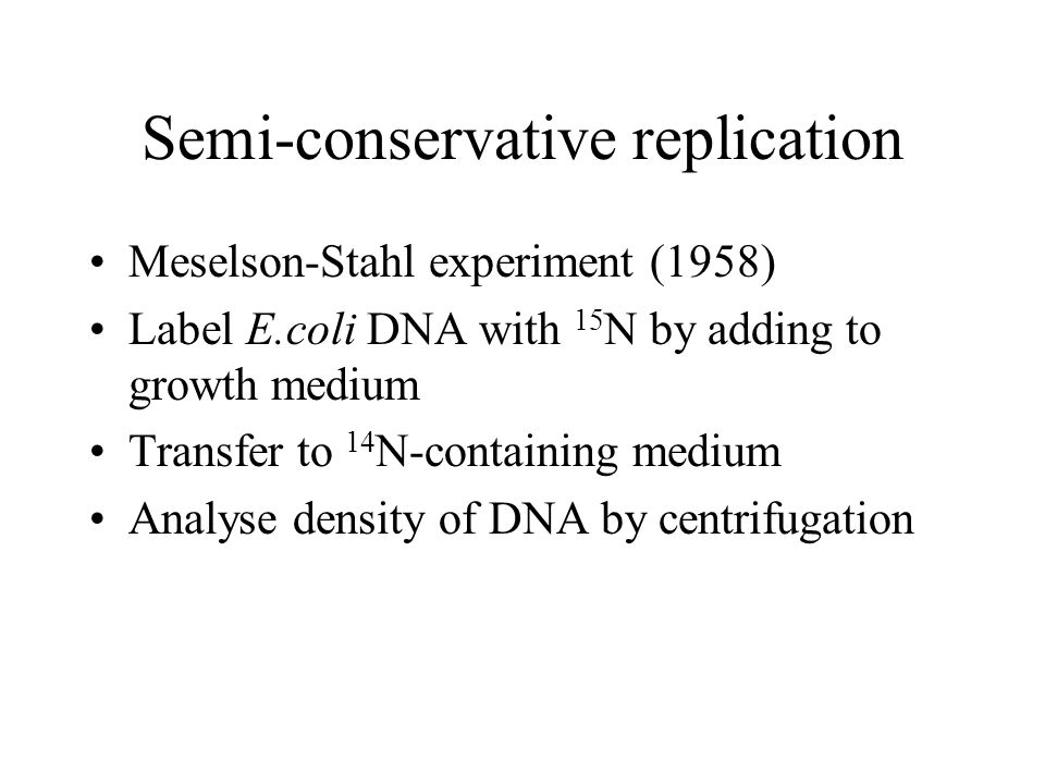 Semi-conservative replication Meselson-Stahl experiment (1958) Label E.coli DNA with 15 N by adding to growth medium Transfer to 14 N-containing medium Analyse density of DNA by centrifugation