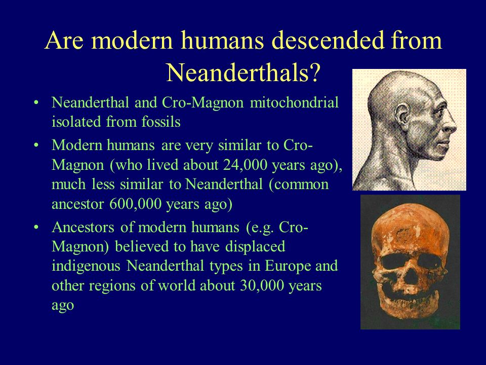 Are modern humans descended from Neanderthals? Neanderthal and Cro-Magnon mitochondrial isolated from fossils Modern humans are very similar to Cro- M