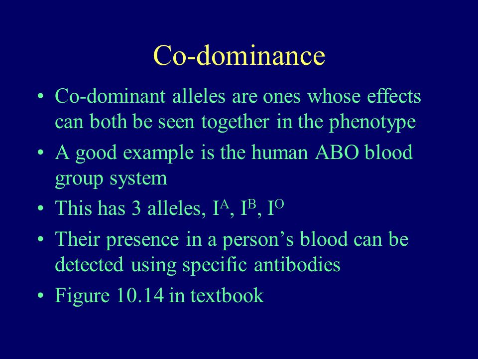 Co-dominance Co-dominant alleles are ones whose effects can both be seen together in the phenotype A good example is the human ABO blood group system This has 3 alleles, I A, I B, I O Their presence in a persons blood can be detected using specific antibodies Figure 10.14 in textbook