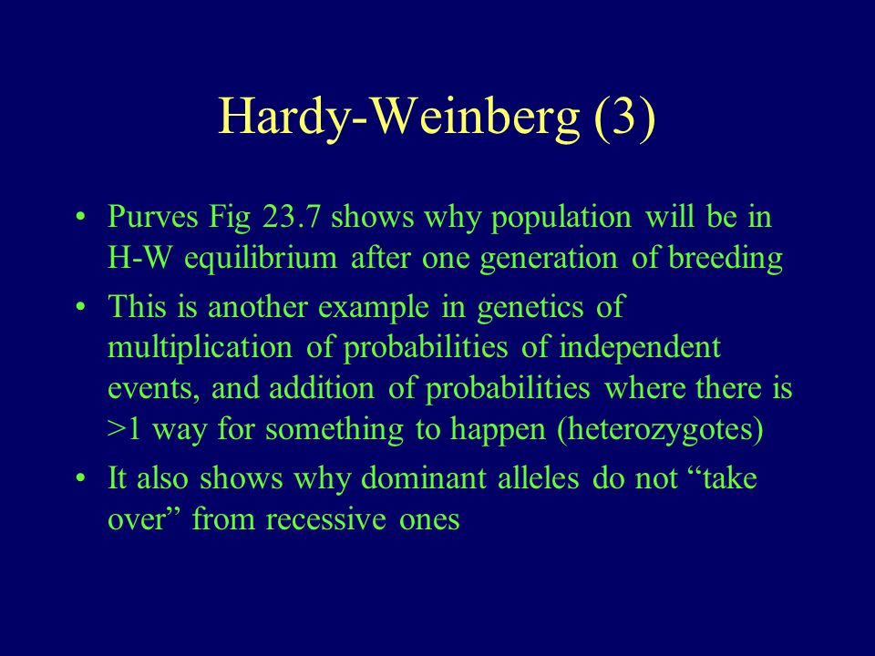 Hardy-Weinberg (3) Purves Fig 23.7 shows why population will be in H-W equilibrium after one generation of breeding This is another example in genetics of multiplication of probabilities of independent events, and addition of probabilities where there is >1 way for something to happen (heterozygotes) It also shows why dominant alleles do not take over from recessive ones