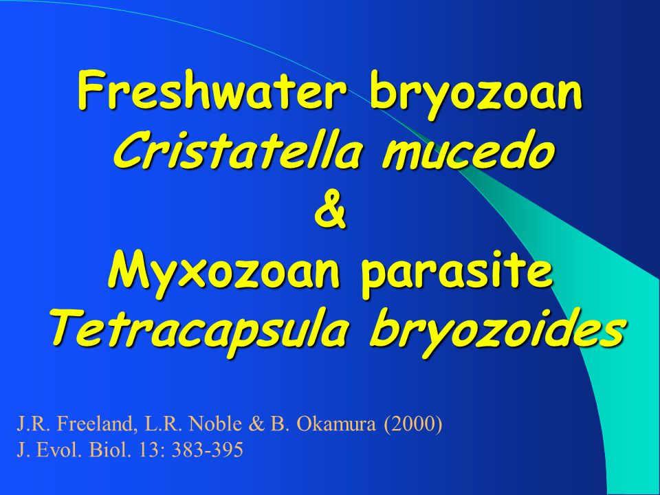 Freshwater bryozoan Cristatella mucedo & Myxozoan parasite Tetracapsula bryozoides J.R. Freeland, L.R. Noble & B. Okamura (2000) J. Evol. Biol. 13: 38