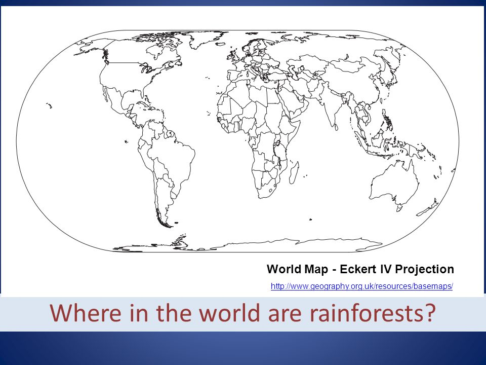 Where in the world are rainforests.