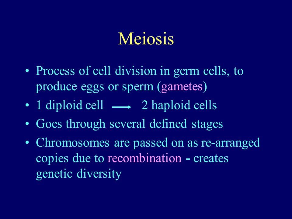 Meiosis Process of cell division in germ cells, to produce eggs or sperm (gametes) 1 diploid cell 2 haploid cells Goes through several defined stages