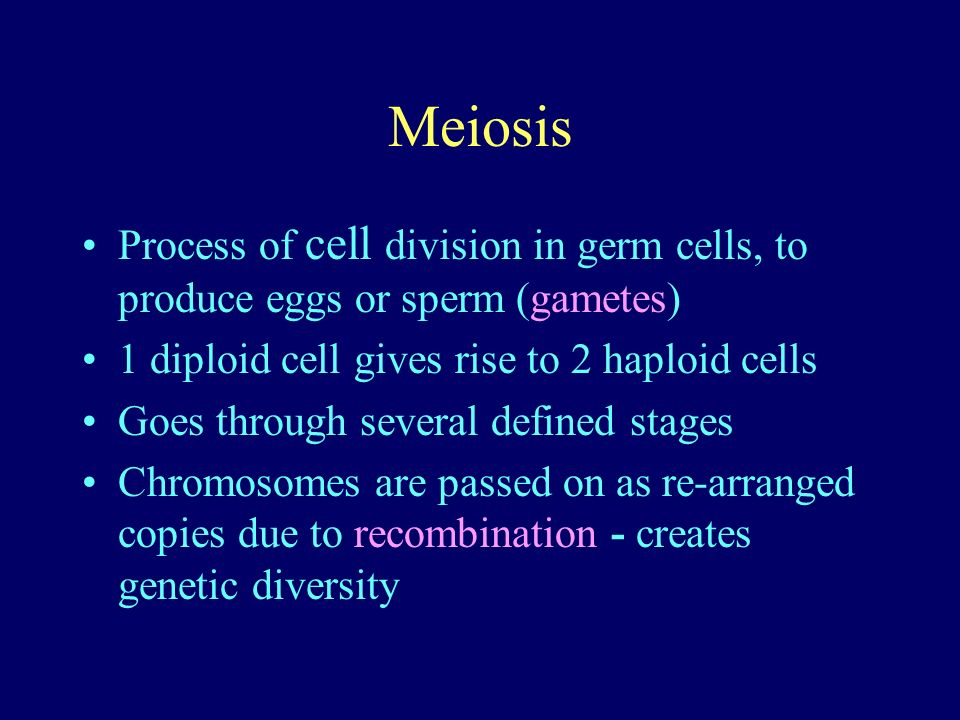 Meiosis Process of cell division in germ cells, to produce eggs or sperm (gametes) 1 diploid cell gives rise to 2 haploid cells Goes through several defined stages Chromosomes are passed on as re-arranged copies due to recombination - creates genetic diversity