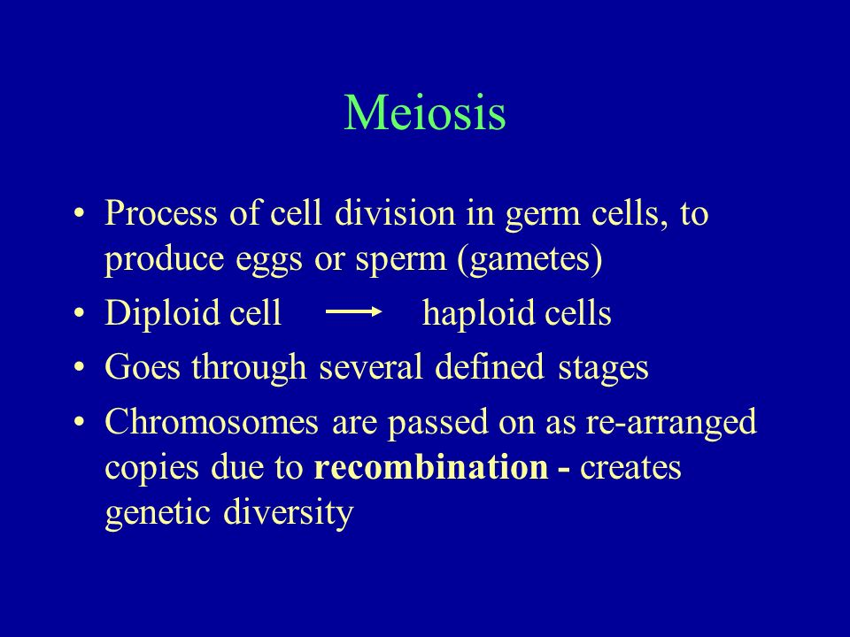 Meiosis Process of cell division in germ cells, to produce eggs or sperm (gametes) Diploid cell haploid cells Goes through several defined stages Chro