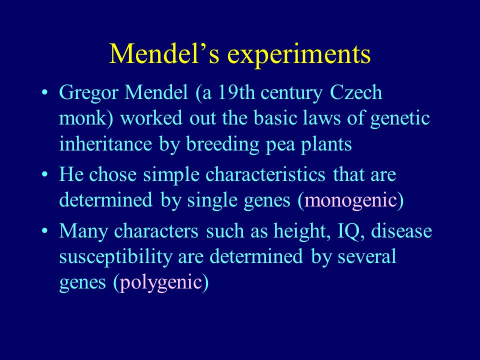 Mendels experiments Gregor Mendel (a 19th century Czech monk) worked out the basic laws of genetic inheritance by breeding pea plants He chose simple
