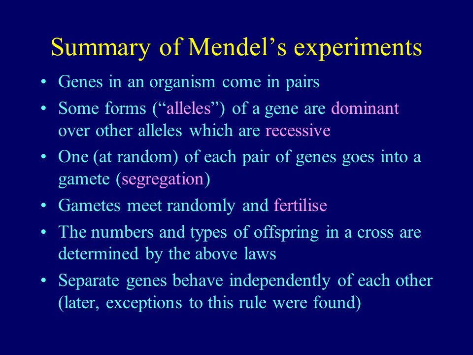 Summary of Mendels experiments Genes in an organism come in pairs Some forms (alleles) of a gene are dominant over other alleles which are recessive O