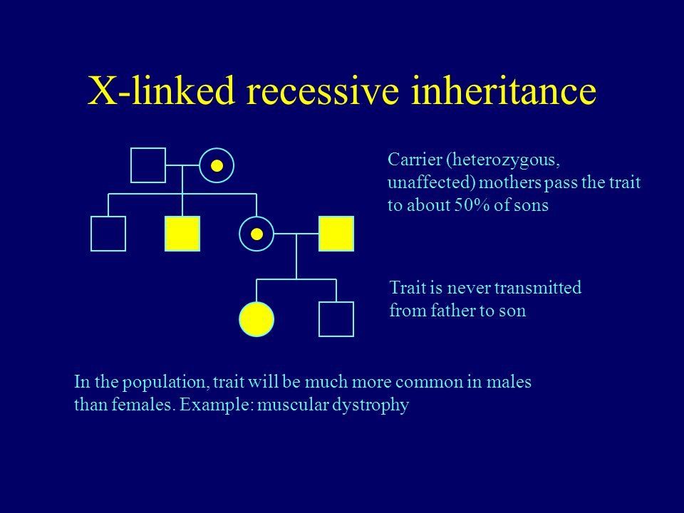 X-linked recessive inheritance Carrier (heterozygous, unaffected) mothers pass the trait to about 50% of sons Trait is never transmitted from father t