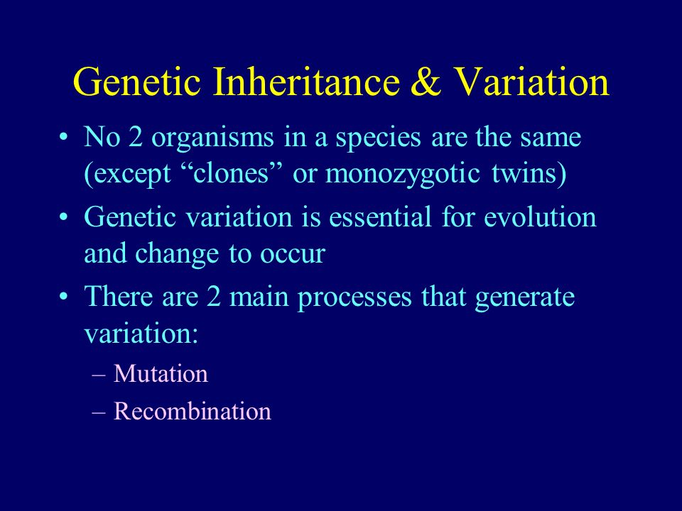 Genetic Inheritance & Variation No 2 organisms in a species are the same (except clones or monozygotic twins) Genetic variation is essential for evolu
