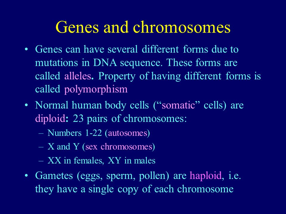 Genes and chromosomes Genes can have several different forms due to mutations in DNA sequence. These forms are called alleles. Property of having diff