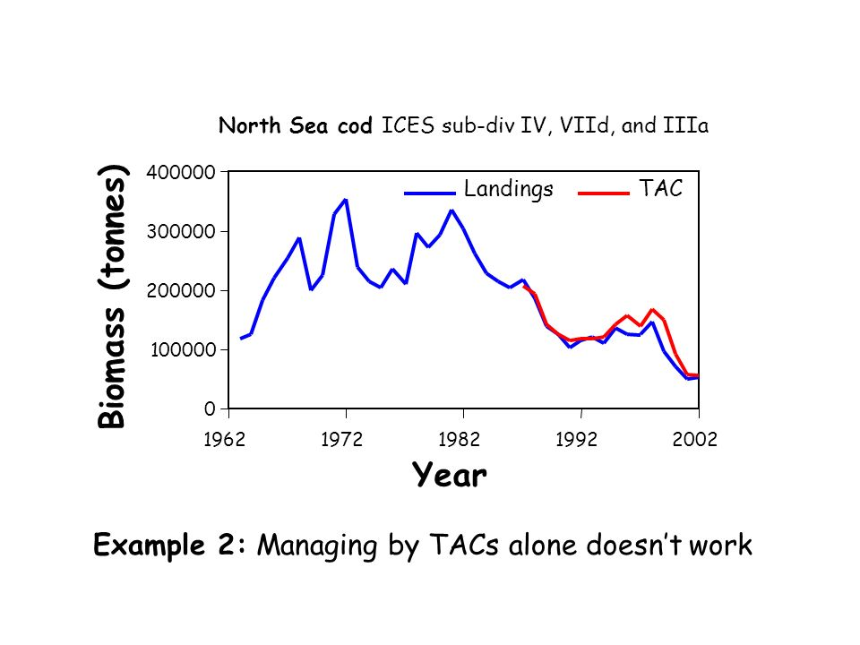 Year Biomass (tonnes) 0 100000 200000 300000 400000 19621972198219922002 LandingsTAC North Sea cod ICES sub-div IV, VIId, and IIIa Example 2: Managing