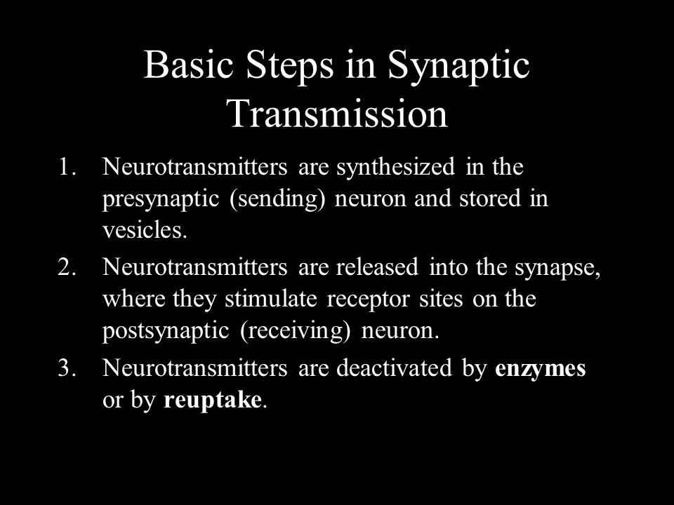 Basic Steps in Synaptic Transmission 1.Neurotransmitters are synthesized in the presynaptic (sending) neuron and stored in vesicles. 2.Neurotransmitte
