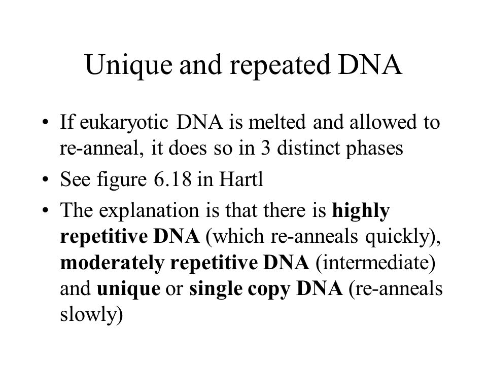 Classes of eukaryotic DNA Highly repetitive: –Bits of old virus genomes –Simple sequence repeats e.g.