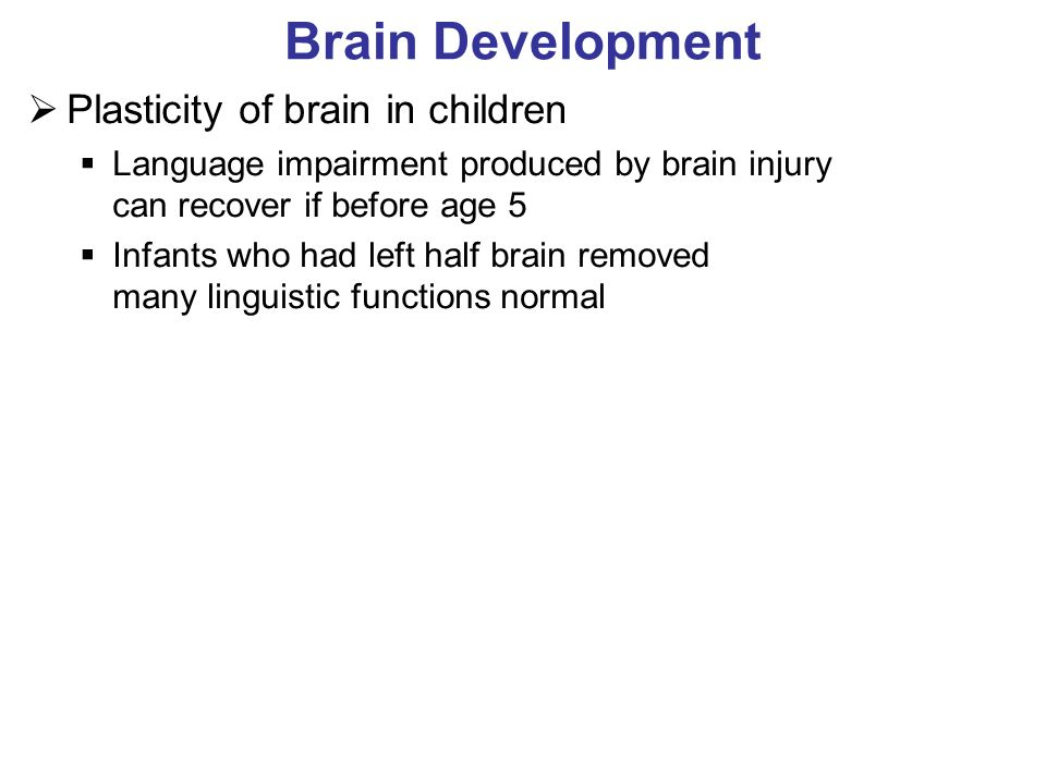 Brain Development Plasticity of brain in children Language impairment produced by brain injury can recover if before age 5 Infants who had left half brain removed many linguistic functions normal