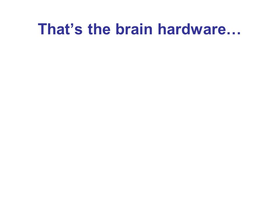 Thats the brain hardware…