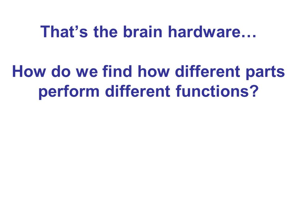 Thats the brain hardware… How do we find how different parts perform different functions