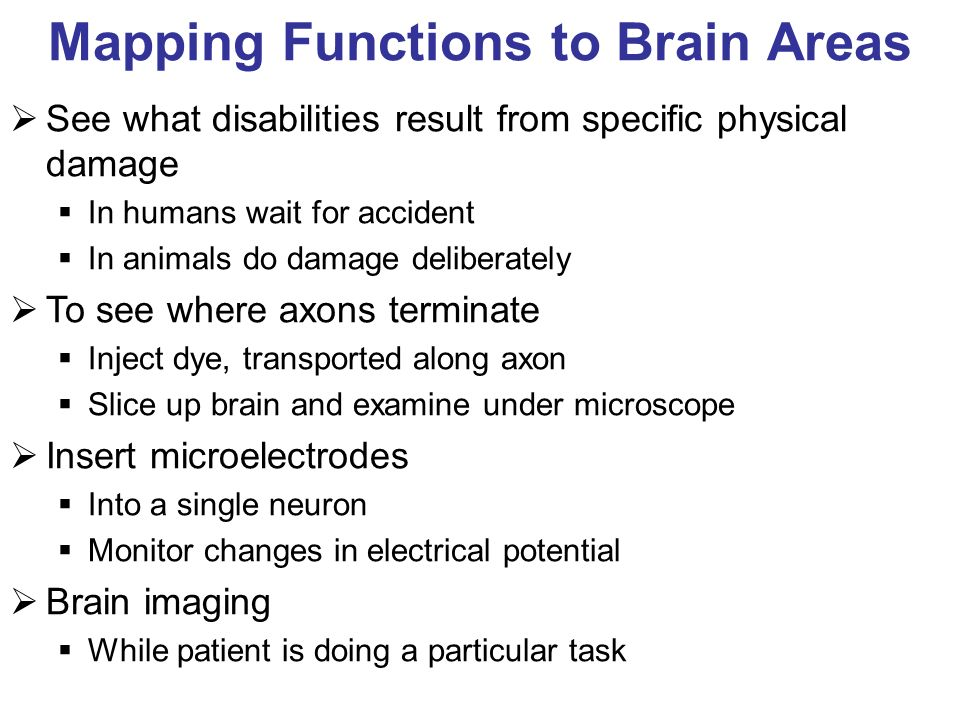Mapping Functions to Brain Areas See what disabilities result from specific physical damage In humans wait for accident In animals do damage deliberately To see where axons terminate Inject dye, transported along axon Slice up brain and examine under microscope Insert microelectrodes Into a single neuron Monitor changes in electrical potential Brain imaging While patient is doing a particular task