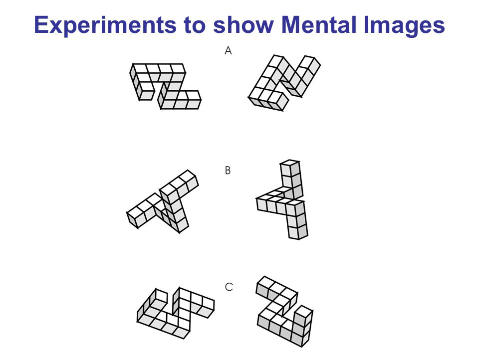 Experiments to show Mental Images