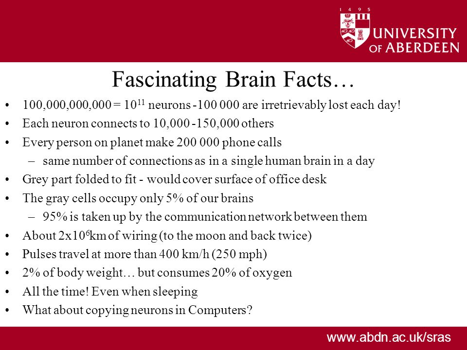 www.abdn.ac.uk/sras Fascinating Brain Facts… 100,000,000,000 = 10 11 neurons -100 000 are irretrievably lost each day.