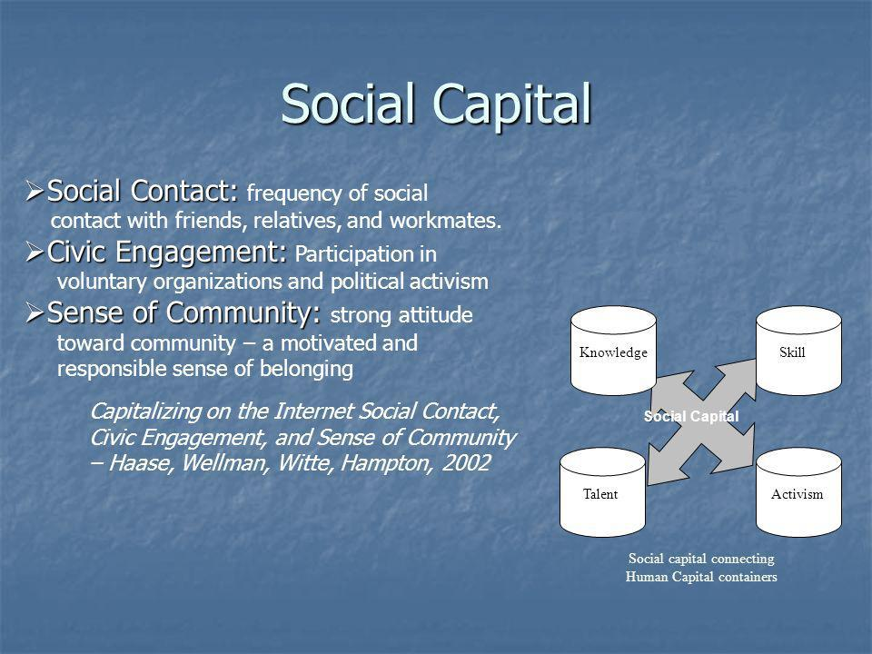 Human Capital Knowledge: Knowledge: Command of a body of facts Skill: Skill: Facility, developed through practice, with the means to carry out a task Talent: Talent: inborn facility for performing a task Behavior: Behavior: observable ways of acting that contribute to accomplishing a task Human Capital Metaphor: Whats in a name.