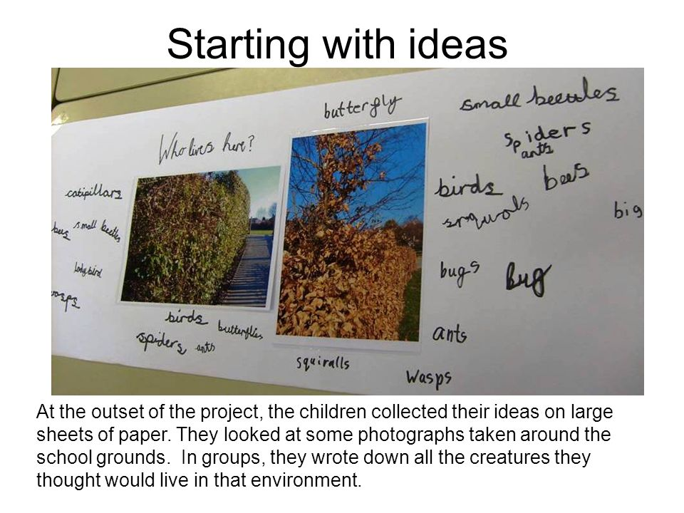Starting with ideas At the outset of the project, the children collected their ideas on large sheets of paper. They looked at some photographs taken a