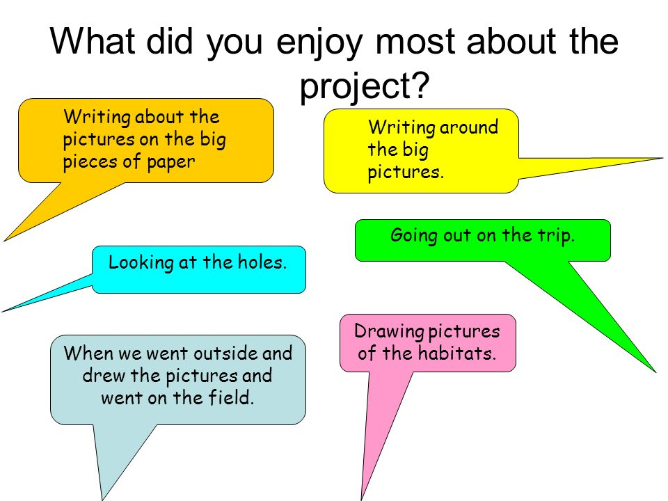 What did you enjoy most about the project? When we went outside and drew the pictures and went on the field. Writing around the big pictures. Going ou