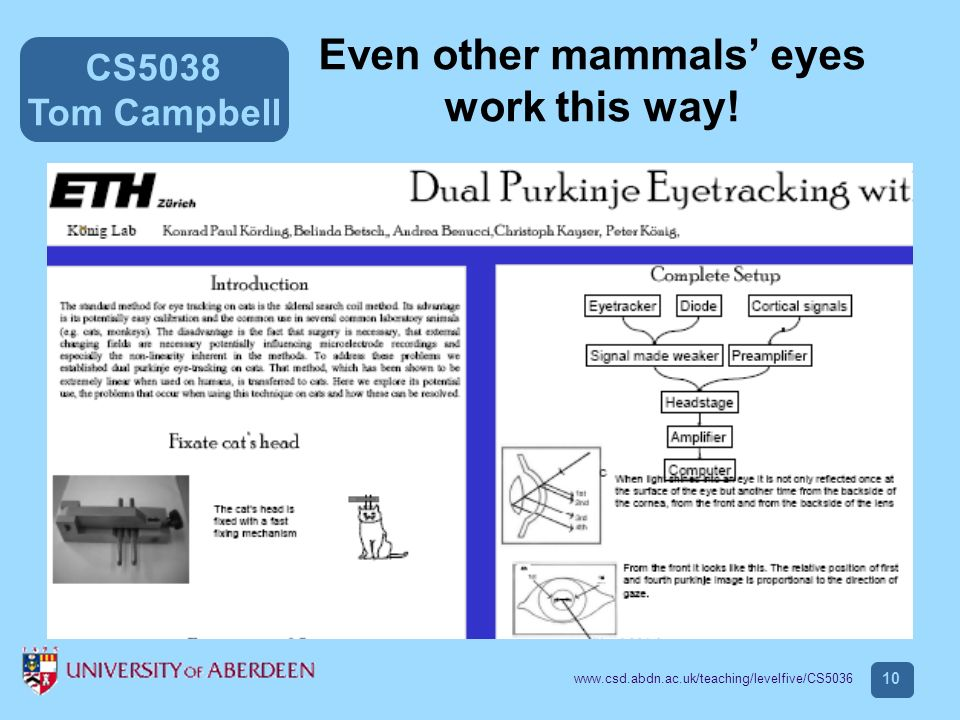 CS5038 Tom Campbell www.csd.abdn.ac.uk/teaching/levelfive/CS5036 10 Even other mammals eyes work this way!