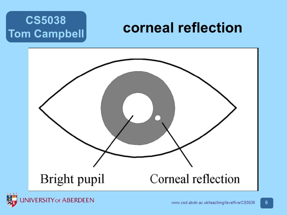 CS5038 Tom Campbell www.csd.abdn.ac.uk/teaching/levelfive/CS5036 7 The corneal reflections