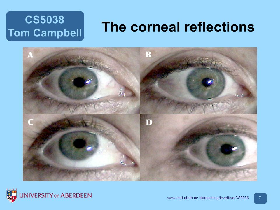 CS5038 Tom Campbell www.csd.abdn.ac.uk/teaching/levelfive/CS5036 8 Example of scanpath