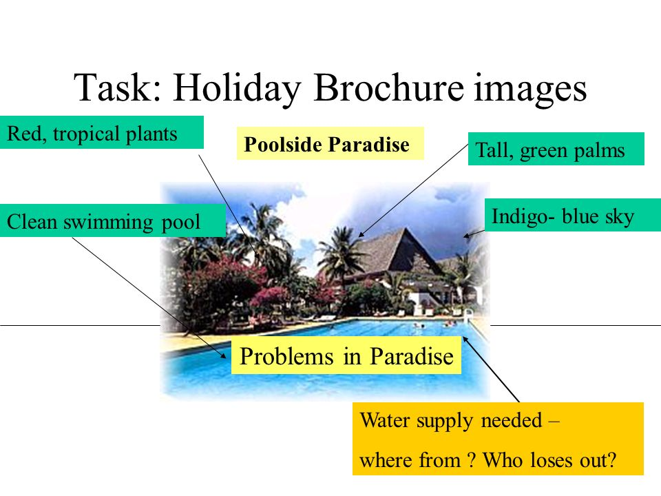 Task: Holiday Brochure images Tall, green palms Red, tropical plants Clean swimming pool Indigo- blue sky Poolside Paradise Water supply needed – wher