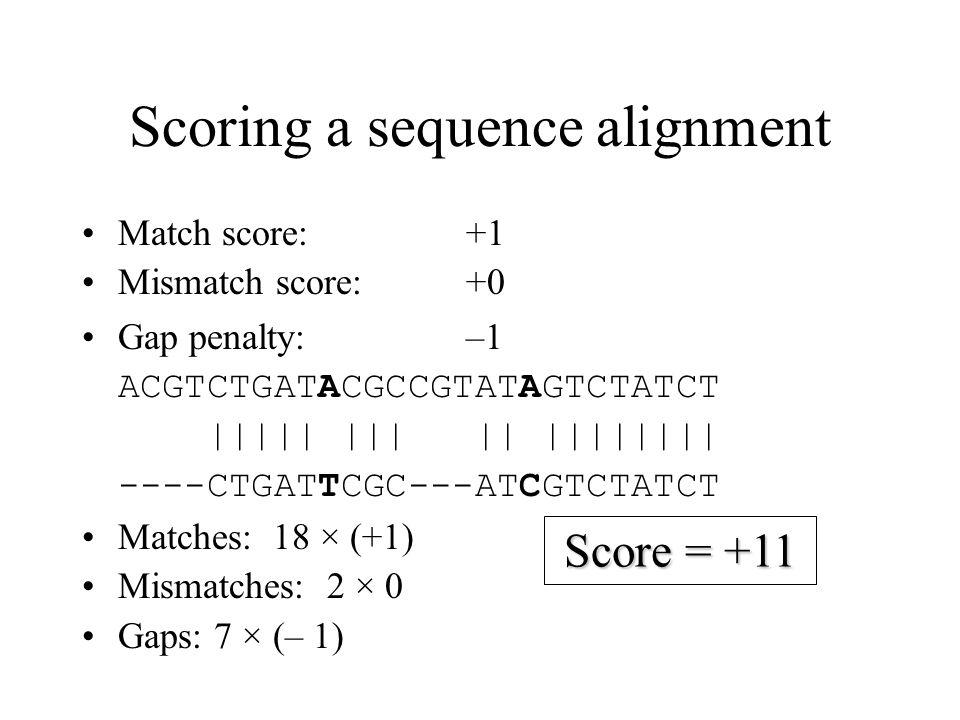 Scoring a sequence alignment Match score:+1 Mismatch score:+0 Gap penalty:–1 ACGTCTGATACGCCGTATAGTCTATCT ||||| ||| || |||||||| ----CTGATTCGC---ATCGTCT