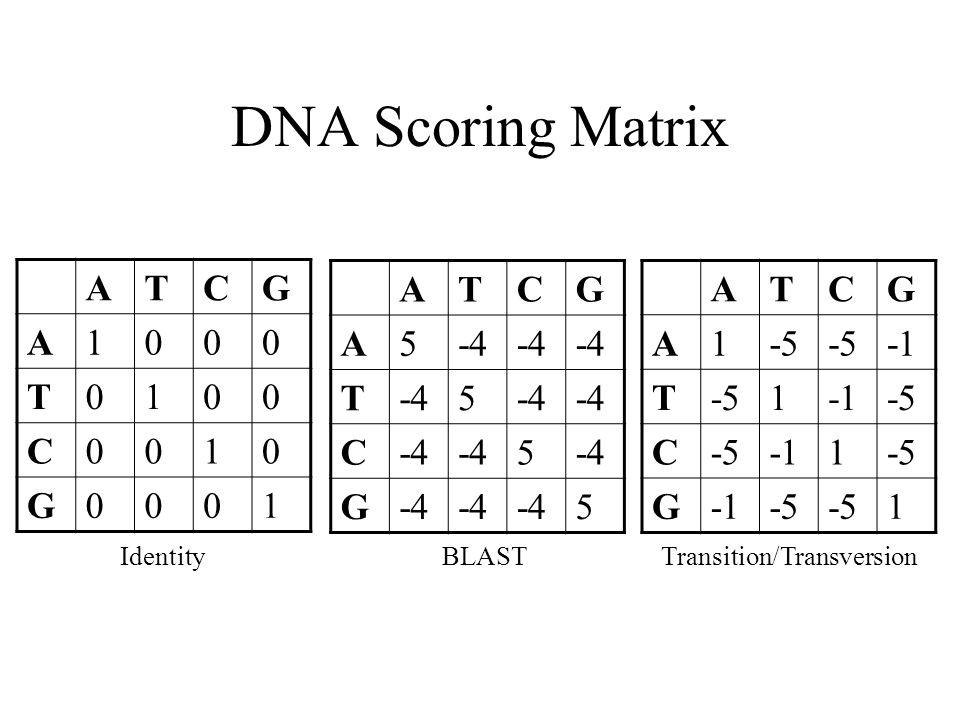 DNA Scoring Matrix ATCG A1000 T0100 C0010 G0001 ATCG A5-4 T 5 C 5 G 5 ATCG A1-5 T-51-5 C 1-5 G-5 1 IdentityBLASTTransition/Transversion