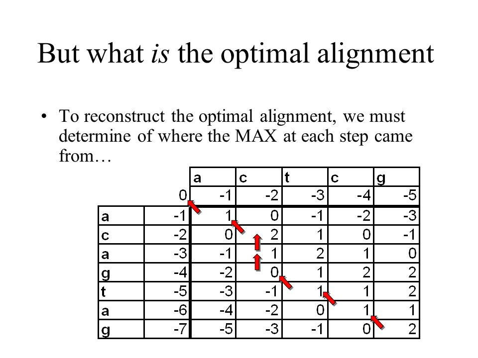 But what is the optimal alignment To reconstruct the optimal alignment, we must determine of where the MAX at each step came from…