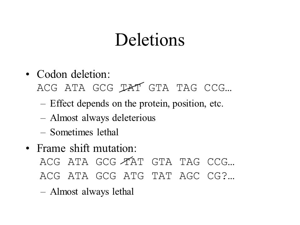 Codon deletion: ACG ATA GCG TAT GTA TAG CCG… –Effect depends on the protein, position, etc. –Almost always deleterious –Sometimes lethal Frame shift m