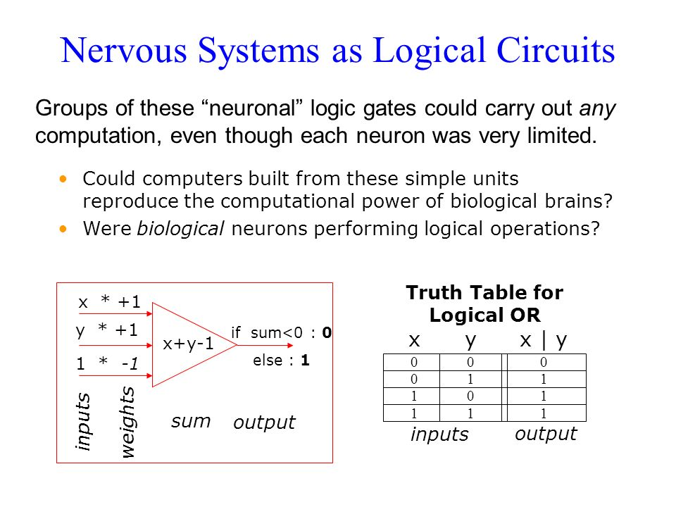 Nervous Systems as Logical Circuits Groups of these neuronal logic gates could carry out any computation, even though each neuron was very limited. x+