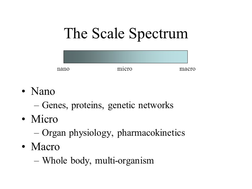 The Scale Spectrum Nano –Genes, proteins, genetic networks Micro –Organ physiology, pharmacokinetics Macro –Whole body, multi-organism nanomicromacro