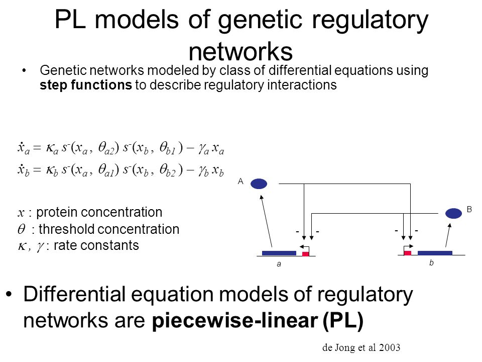 PL models of genetic regulatory networks Genetic networks modeled by class of differential equations using step functions to describe regulatory inter
