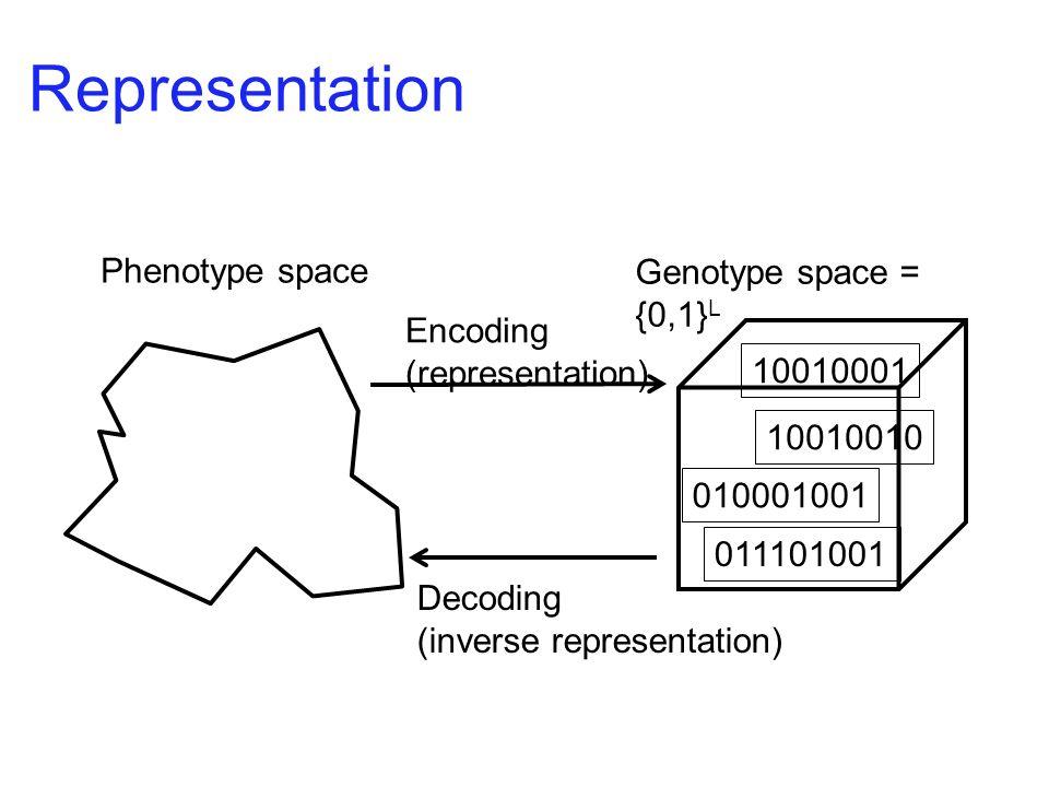Genotype space = {0,1} L Phenotype space Encoding (representation) Decoding (inverse representation) 011101001 010001001 10010010 10010001 Representat