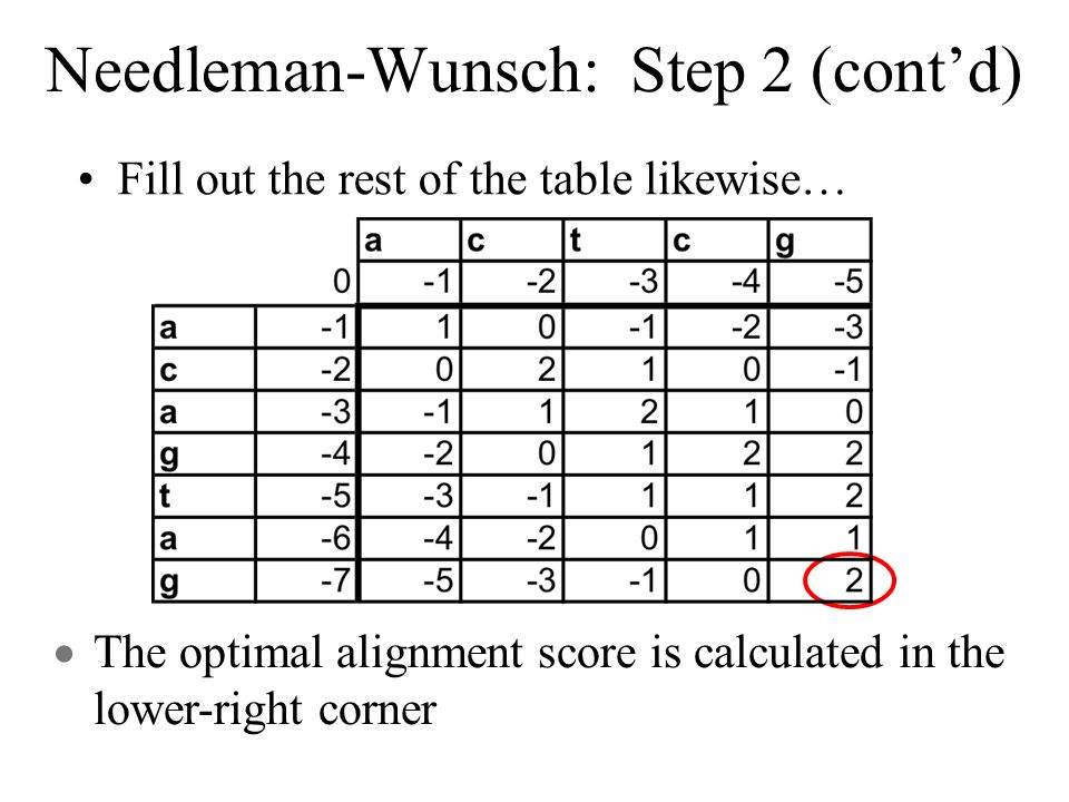 Needleman-Wunsch: Step 2 (contd) Fill out the rest of the table likewise… The optimal alignment score is calculated in the lower-right corner