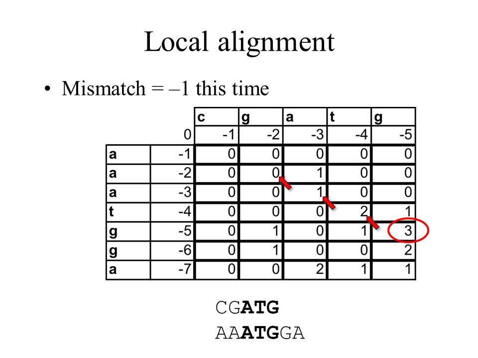 Local alignment Mismatch = –1 this time CGATG AAATGGA