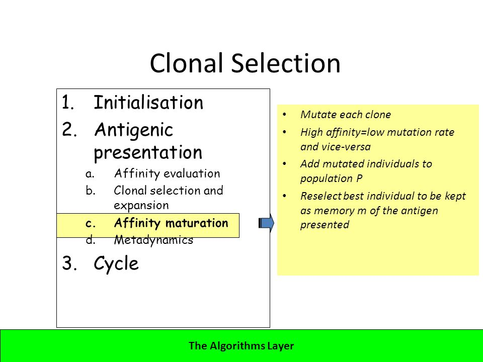 Lecture 4CBA - Artificial Immune Systems 1.Initialisation 2.Antigenic presentation a.Affinity evaluation b.Clonal selection and expansion c.Affinity maturation d.Metadynamics 3.Cycle Clonal Selection Mutate each clone High affinity=low mutation rate and vice-versa Add mutated individuals to population P Reselect best individual to be kept as memory m of the antigen presented The Algorithms Layer