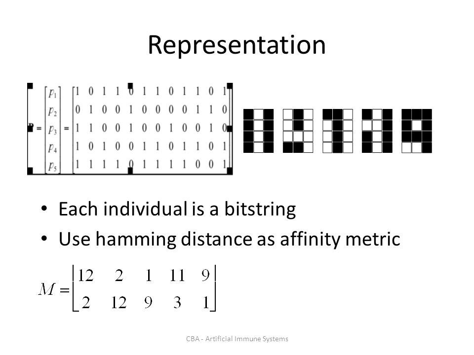 CBA - Artificial Immune Systems Representation Each individual is a bitstring Use hamming distance as affinity metric